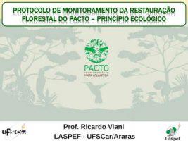 Protocolo de monitoramento da restautação florestal do PACTO – Princípio Ecológico